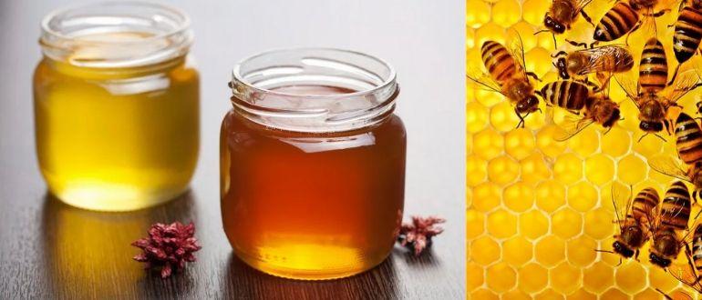 Пасека-мед