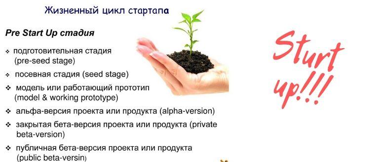 Схема развитие стартапа