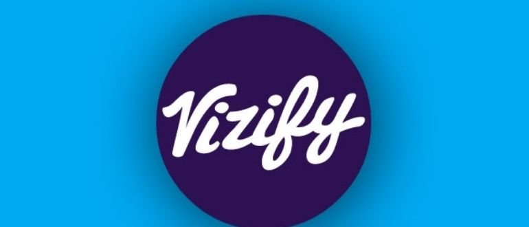 Vizily